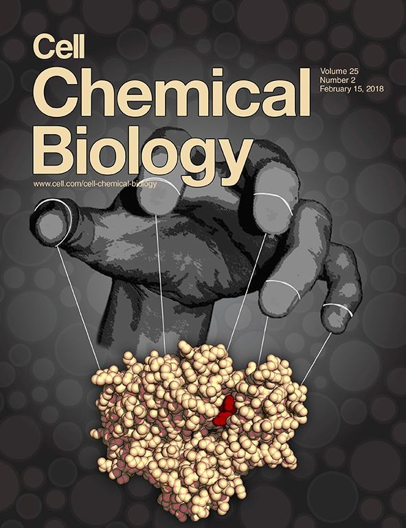 Insights into an Ancient Atypical Kinase Essential for Biosynthesis of Coenzyme Q