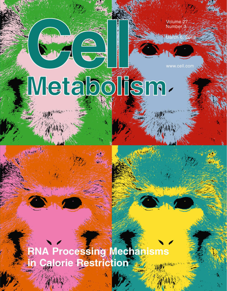 Caloric Restriction Engages Hepatic RNA Processing Mechanisms in Rhesus Monkeys